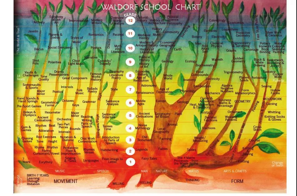 『幼儿园到小学的8堂必修课,原来还可以这样学』华德福本土化教学方法与实践